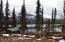 28951 N Parks Highway, & 29054, Remote, AK 99000