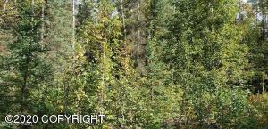 10251 W Forest Hills Circle, Wasilla, AK 99623