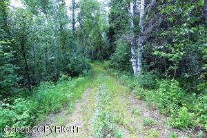 L3 Tofty Road, Manley Hot Springs, AK 99756