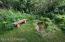 Bench & Pond
