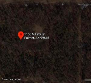 1156 N Esty Drive, Palmer, AK 99645
