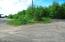 Homestead Road driveway