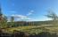 15790 E Timber Circle, Talkeetna, AK 99676