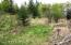 Varied vegetation