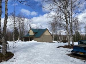 48950 & Lot 791 S Silver Silver Salmon Circle, Willow, AK 99688