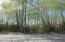 Meadow Lakes Loop frontage