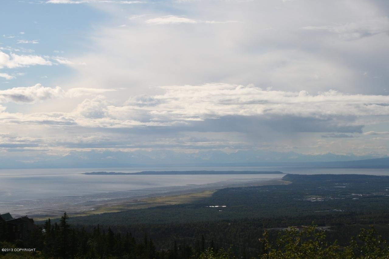 L11 Snow Bear Drive, Anchorage, AK 99516