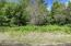 Four Vacant Lots