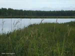 5280 S Horseshoe Lake Road, Big Lake, AK 99652
