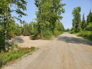 11601 E Yarrow Road, Palmer, AK 99645