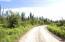 C28 Alaskan Wildwood Ranch(r)  (1)