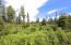 C28 Alaskan Wildwood Ranch(r)  (2)