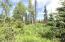 C28 Alaskan Wildwood Ranch(r)  (3)