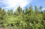 C28 Alaskan Wildwood Ranch(r)  (6)