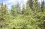 C28 Alaskan Wildwood Ranch(r)  (7)