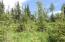 C28 Alaskan Wildwood Ranch(r)  (8)