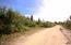 C28 Alaskan Wildwood Ranch(r)  (9)