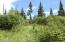 C28 Alaskan Wildwood Ranch(r)  (11)