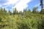 C28 Alaskan Wildwood Ranch(r)  (12)