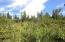 C28 Alaskan Wildwood Ranch(r)  (14)