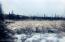 Winter Alaskan Wildwood Ranch(r)-16