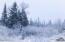 Winter Alaskan Wildwood Ranch(r)-9
