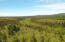 C32 Alaskan Wildwood Ranch(r)  (1)