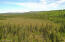 C32 Alaskan Wildwood Ranch(r)  (3)