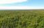 C29-31 Alaskan Wildwood Ranch(r)  (9)