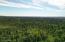 C29-31 Alaskan Wildwood Ranch(r)  (11)