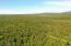 C29-31 Alaskan Wildwood Ranch(r)  (12)