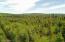 C22 Alaskan Wildwood Ranch(r)  (1)