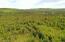 C22 Alaskan Wildwood Ranch(r)  (2)
