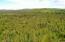 C22 Alaskan Wildwood Ranch(r)  (3)