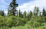 C16 Alaskan Wildwood Ranch(r)  (5)