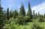 C16 Alaskan Wildwood Ranch(r)  (6)