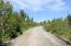 C16 Alaskan Wildwood Ranch(r)  (1)