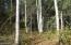 L7 E Kitty Hawk Circle, Talkeetna, AK 99676
