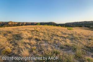 15750 CANYON PASS RD, Amarillo, TX 79119