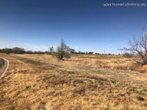 1344 10TH AVE, Amarillo, TX 79107