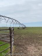 Photo for MLS Id 20210628142539020990000000 located at 630 Acres in Waka, TX