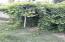 back shrubery