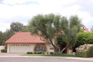 9380 N 96TH Place, Scottsdale, AZ 85258