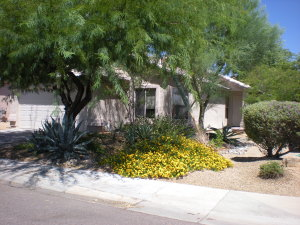 29417 N 51ST Street, Cave Creek, AZ 85331