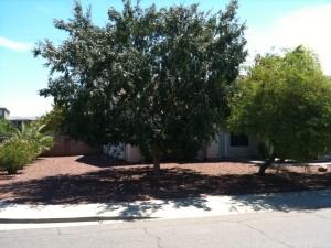 8861 N 109TH Avenue, Peoria, AZ 85345