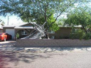 1011 S LOLA Lane, Tempe, AZ 85281