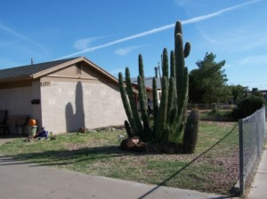 1345 S Pasadena, Mesa, AZ 85210
