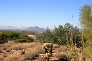 Camelback Mountain in your own backyard!