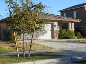 4248 E BRUCE Court, Gilbert, AZ 85234