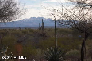 Four Peaks Mtn View from Inside & Out!